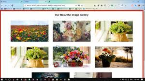 beautiful javascript image gallery with