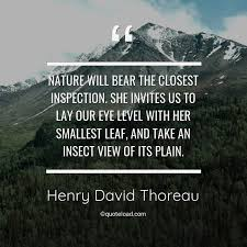 nature will bear the closest henry david thoreau about nature