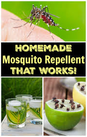 homemade mosquito repellent that works