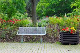 bench for relaxing in the summer park
