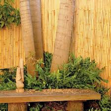 Bamboo Screening Jati Natural Chippy S Outdoor