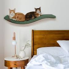animal cat bed pet bed cosy and dozy