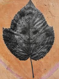 poesiacontemporanea | Le Mie Cose