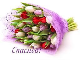 Открытка картинка спасибо благодарность букет тюльпаны.html ...