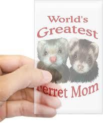 Amazon Com Cafepress World S Greatest Ferret Mom Rectangle Sticker Rectangle Bumper Sticker Car Decal Home Kitchen