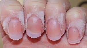 nexgen nails vs gel new expression nails