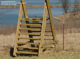 Handyman Debsroots Picture How To Build A Ladder Over A Fence Building A Fence Backyard Fence Design
