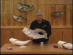 mckenzie s arp 3 d fish reproductions