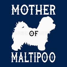 Maltipoo Mom Mother Dog Shirt Gift For Woman Girls Women S T Shirt Spreadshirt
