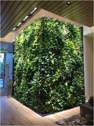 living wall design maintenance