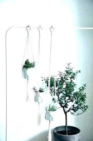 indoor wall plant holders themajors info