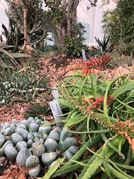 orto botanico pádua atualizado 2020