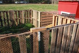 Ready For Our New Pets Holding The World In A Paper Cup Chicken Fence Chicken Coop Pallets Portable Chicken Coop