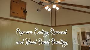 popcorn ceiling removal and wood panel