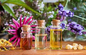 organic cosmetics skin care and makeup