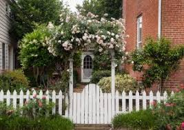 What Plants Work Best For Fence Line Landscaping Albaugh Sons