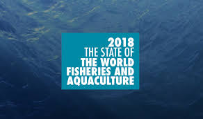 State of Fisheries and Aquaculture in ...