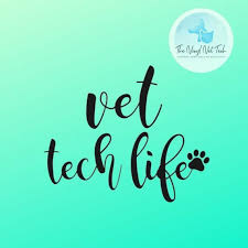 Vet Tech Decal Veterinary Medicine Car Window Decal Laptop Etsy Paw Print Stickers Vet Tech Vet Tech Gifts