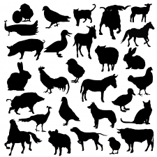 Premium Vector Farm Animals Cattle Silhouette Clip Art