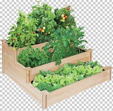 raised bed gardening flower garden
