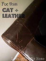 how to fix cat scratches on leather