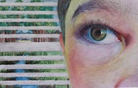 Scholastic art and writing | Brenda.Robson.Art
