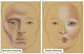 male vs female contouring
