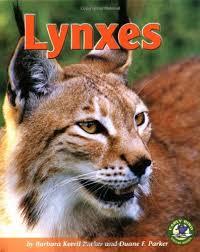 Lynxes (Early Bird Nature Books): Parker, Barbara Keevil, Parker, Duane F.:  9780822528715: Amazon.com: Books