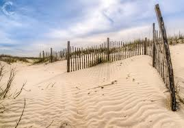 Sand Fencing Town Of Pawleys Island Sc