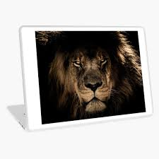 Cool Lion Stickers Pictures Laptop Skin By Bmcreations5 Redbubble