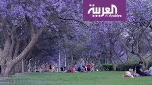 العربية معرفة أبها عروس الجنوب وجنة المصائف العربية Youtube