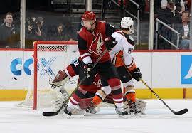 Anaheim Ducks Sign Stay-at-Home Defenseman Luke Schenn