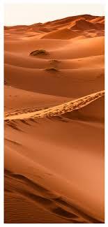 Lovepik صورة Jpg 400555291 Id خلفيات بحث صور خلفية المحمول الصحراء