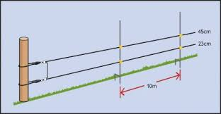 Wire Heights And Post Spacings For Electric Fences