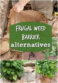 weed barrier alternatives to plastic