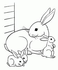free printable rabbit coloring pages