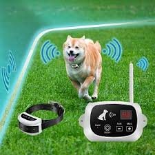 The Best Wireless Dog Fence Of 2020 Dog Warmth