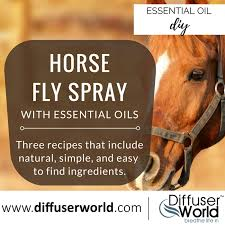 homemade essential oil fly spray