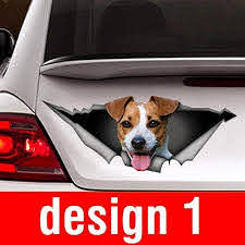 Amazon Com Jack Russell Terrier Car Sticker Dog Car Decal Vinyl Sticker For Cars Windows Walls Fridge Toilet And More 15 Inch Home Kitchen
