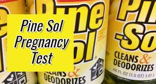 homemade pregnancy test with pine sol