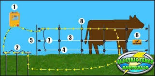 What Parts Do I Need To Build A Basic Electric Fence Setup Electric Fence Australia