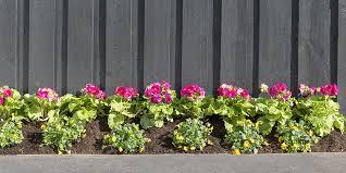 Freshen Your Fence Bunnings Warehouse