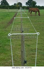 Electric Fence In Horse Paddock Stock Image Horse Paddock Electric Fence Horse Barns