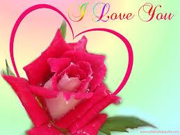 i love you beautiful image لم