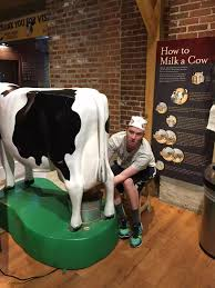 The Origins Of Milk Why Was The First Cow Milked In The First Place By Lana Valente Medium