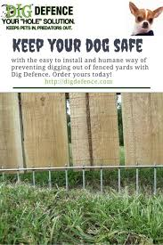 Backyard Fence Ideas For Dogs 16 Digging Dogs Dog Fence Stop Dogs From Digging