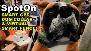 A Look At The Spoton Smart Gps Dog Collar And Virtual Smart Fence Youtube