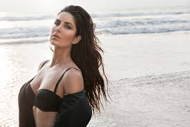 katrina kaif wallpaper 781905