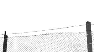 Download Barbed Wire Fence Fence Png Image With No Background Pngkey Com