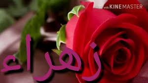 اسم زهراء اجمل اسم بنت دلع ورد